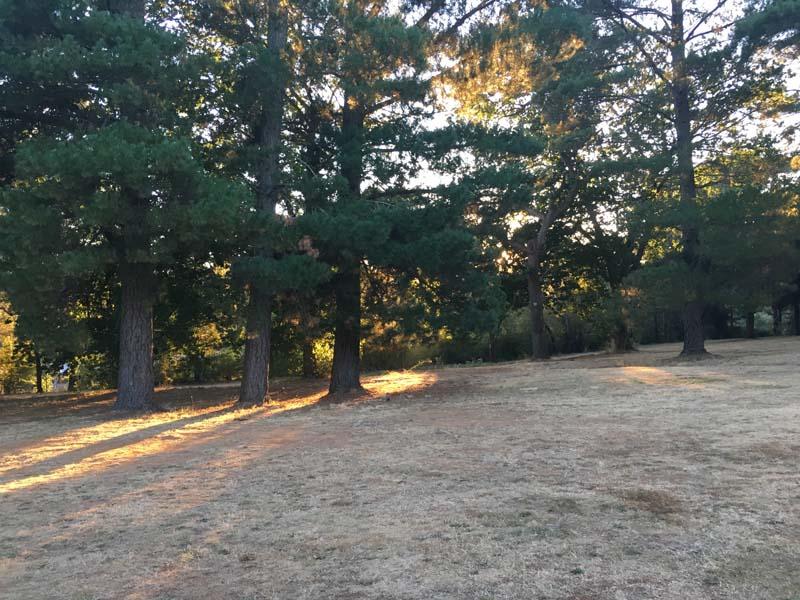 empty campsite Daylesford